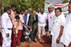 KAMARAJAR 115TH BIRTHDAY COMPETITION PRIZE DISTRIBUTION FUNCTION - 19.07.2017 - Vice Chancellor Dr. P.P. Chelladurai planting the sapling