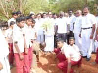 mr-tamilaruvi-maniyan-planting-the-saplings-on-31-07-2013