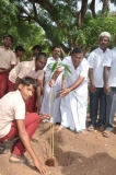 mr-s-k-mohan-general-secretary-mnu-planting-sapling-112th-kamarajar-birthday-competition-prize-distrubution-function-on-25-07-2014